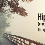 Hiprex_banner